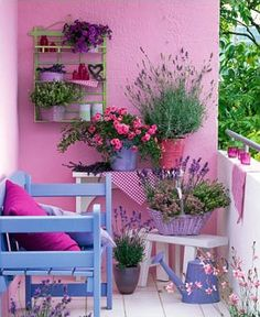 Petit balcon coloré avec fleurs et plantes vertes