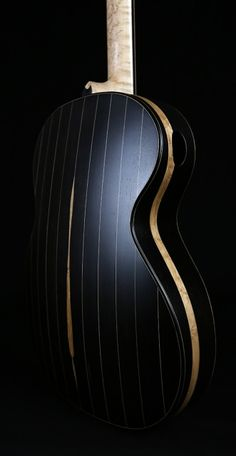 Vaultback Acoustic Guitar Blackwood Landscape 2