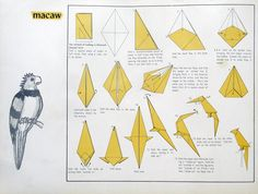 steps how to make a origami parrot wedding decor style pinterest rh pinterest com Origami Parakeet Origami Parakeet