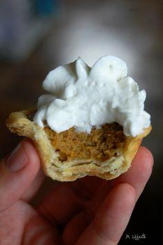 Mini Pumpkin Pies -- Perfect!