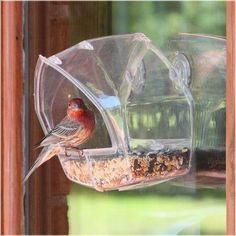 Birdscapes Clear Window Feeder - 348