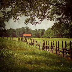 crooked fences....