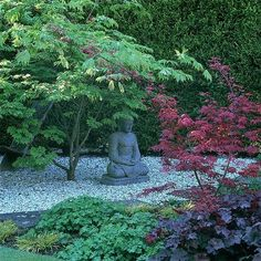 a shady courtyard of pebbles and brick paths, filled with acers, hellebores, ferns and grasses. A Buddha crafted from blue Karnataka stone, sits beneath Acer palamatum.  Peaceful