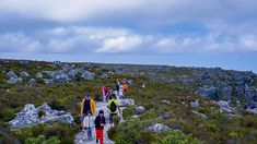 Hiking trails on the top of Table Mountains, Cape Town (via thecoconutrace.com)