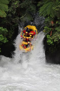 7 meter drop. Highest commercially rafted waterfall. Tutea Falls, Kaituna River, New Zealand.