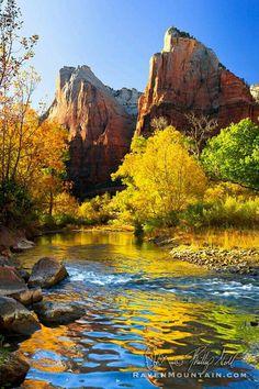 Landscape Photos, Landscape Art, Landscape Paintings, Landscape Photography, Nature Photography, Park Photography, Photography Lessons, Digital Photography, Zion National Park