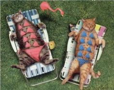 (smile) They must of tranquilized those cats to get them bikini's on!
