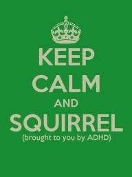 Yes, I'm very easily dist....... what?  oh, yeah, distracted.    Shiny Squirrel Syndrome!!!!