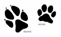 cat track and dog track - for craft purposes