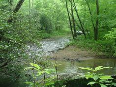 Betty's Creek ~ Dillard, Georgia