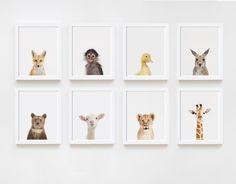 Billeder af dyrebørn