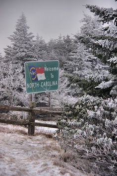 Welcome to the North Carolina mountains - Pisgah National Forest at Roan Mountain - on a snow day