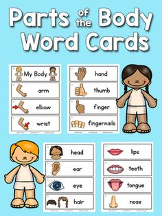 Parts of the Body Picture Word Cards