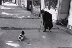 Man meets dog, Neuilly, 1952 - Elliott Erwitt
