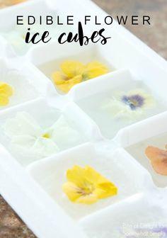 Edible Flower Ice Cu