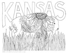 Kansas state symbols coloring pages dowloaded in for Kansas state symbols coloring pages
