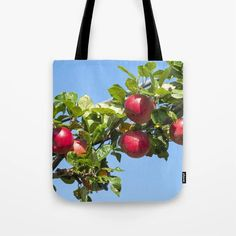 Red Apples Ripening on a Tree Branch Tote Bag - #totes #totebags #apples #shoppingbags (affiliate link)