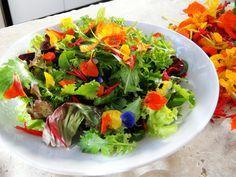 beautiful salads - Buscar con Google