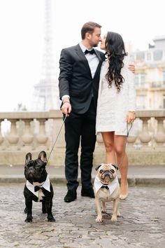 Sina and Martin's Chic Paris Town Hall Wedding Sina und Martin Chic Pariser Rathaus Hochzeit Paris Wedding, Dog Wedding, Wedding Dress, Wedding Blog, Small Intimate Wedding, Intimate Weddings, Small Weddings, Black Weddings, Destination Weddings