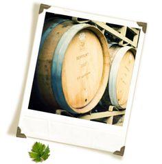 Lost Oak Winery (Burleson, TX)