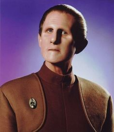 essay about translation theory legal
