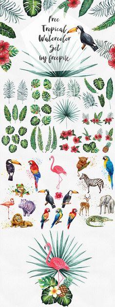 DLOLLEYS HELP: Free Tropical Watercolor Set