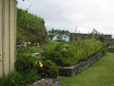 Cinchona Botanical Gardens 2