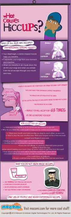 A hiccup is a sudden, involuntary forced intake of breath. Do you know what causes hiccups? Read our Infographic to find out!