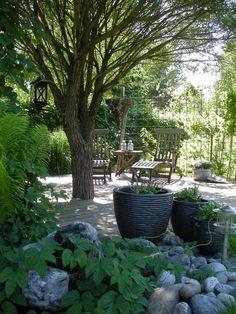 HANNAS: Min trädgård