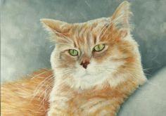 Sam, an oil painting by Ann Ohr