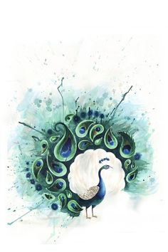Peacock tattoo... I don't understand the white cloud but love the idea and style