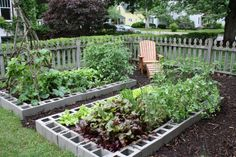 Cinder Block Garden - The cinder block holes can be used to plant marigolds and other pest repellent flowers. veggie gardens, garden ideas, raised bed gardens, block garden, cinderblock, rais bed, cinder block, garden beds, the block