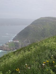On top of Signal Hill, beautiful St. John's, Newfoundland