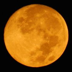 This morning's setting moon - September 8, 2014 at 5:30 a.m. - by Lance Bullion. Super Harvest Moon lights up the night of September 8-9