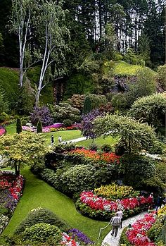 Butchart Gardens, Victoria, British Columbia.  Wow! Canada, Victoria, Travel, Places, Beauty Gardens, Flowers, Garden, British Columbia, Butchart Gardens