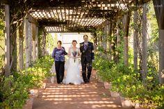 Wedding at Clark Gardens' Rose Pavilion Photo Credit - K & S Photography Clark Gardens, Garden S, Pavilion, Photo Credit, Rose, Photography, Wedding, Valentines Day Weddings, Pink