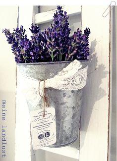 Lavendel Im Topf, Lavendel Rosen, Flieder, Provence Lavendel, Deko Ideen,  Farben