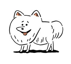 犬のほうのスピッツ | SPITZ