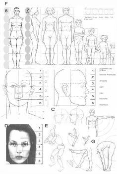 Академический рисунок   VK Human Body Drawing, Human Anatomy Drawing, Human Figure Drawing, Figure Drawing Reference, Human Art, Human Human, Anatomy Sketches, Drawing Sketches, Art Drawings