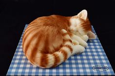 This beautiful Sleeping Cat Cake makes the perfect cake for mothers day gift or any birthday party. This Cake Serves Available in a choice of flavours Birthday Cake For Cat, Birthday Cakes, 10 Birthday, Big House Cats, Personalised Cakes, Realistic Cakes, Serval Cats, Herding Cats, Animal Cakes