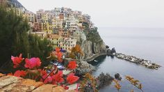 """#ispyapi #Repost @emmaelizabethjewelry  """"Cinque Terre you are beautiful """" . . . . #cinqueterre #studyabroad #italy"""