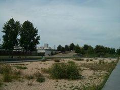 Jardins d'Eole - Août 2013