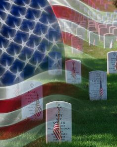 Thank you for your service...Graves at Arlington National Cemetery (Free Download Poster)