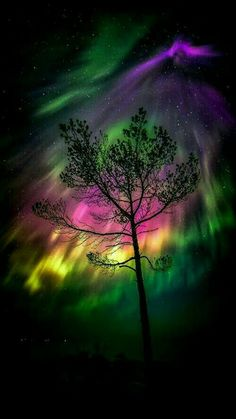 Aurora Borealis - The Northern Lights. A beautiful mixture of colors in the sky. Beautiful Sky, Beautiful Landscapes, Beautiful World, Beautiful Places, Science And Nature, Nature Nature, Amazing Nature, Belle Photo, Night Skies