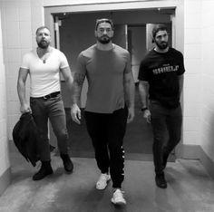 The Shield. The Final Chapter Wwe Superstar Roman Reigns, Wwe Roman Reigns, Divas, Wwe Dean Ambrose, Wwe Seth Rollins, Wonder Twins, The Shield Wwe, Roman Reings, Wwe Tna