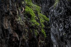 Cyrille Oumedjkane dives from a rock at Wang Long Bay on Phi Phi Don, Krabi, Thailand. Oahu, Île Phi Phi, Places Around The World, Around The Worlds, Diving World, Cliff Diving, Photos 2016, Go Outside, The Outsiders