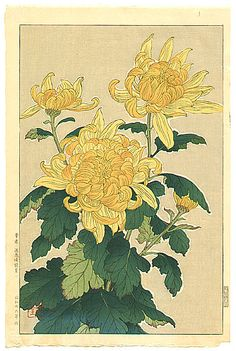 Shodo Kawarazaki 1889-1973 - Yellow Chrysanthemum