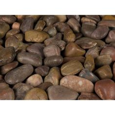 MS International 40 lb. Large Red Polished Pebbles Bag-LPEBQRED5POL40 at The Home Depot