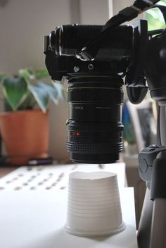 macro photography soft box trick - for small objects, just cut off the bottom from a plastic cup!