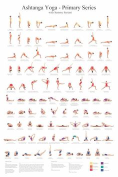 24x36 Ashtanga Yoga Primary Series with Sammy Seriani. This poster illustrates the postures of the primary series Full color poster shows perfect: